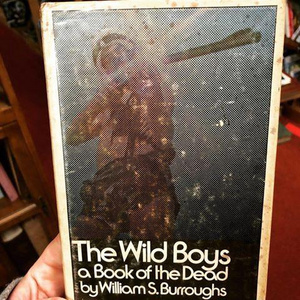 First Edition: The Wild Boys - A Book of the Dead by William S. Burroughs